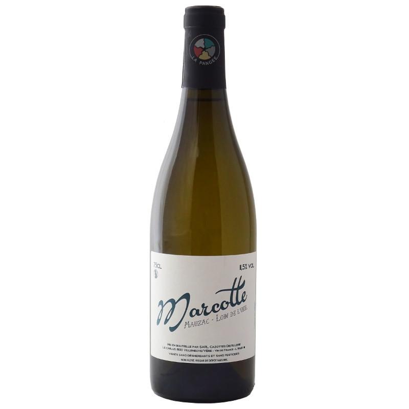 Cazottes - Marcotte blanc