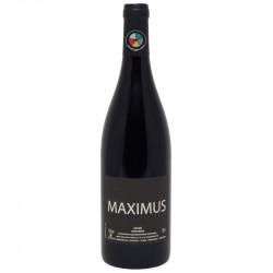 Maximus 2020 - Nicolas Carmarans