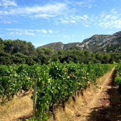 vins naturels de Provence